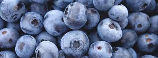 Hvilke er de beste kildene til antioksidanter?