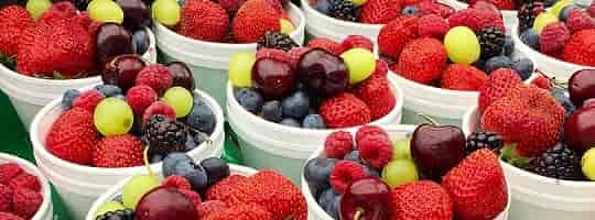 Dette bør du vite om antioksidanter
