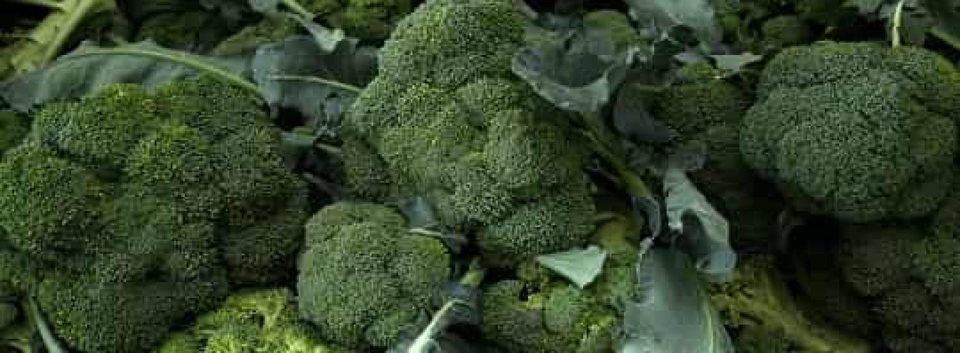 Dampe brokkoli? Hvordan og hvorfor?