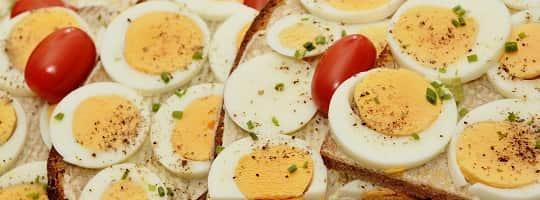 Hvilke oppgaver har protein i kroppen?