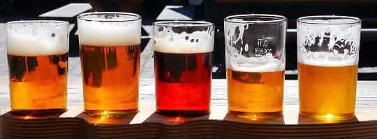 Hvor mange kalorier er det i øl?