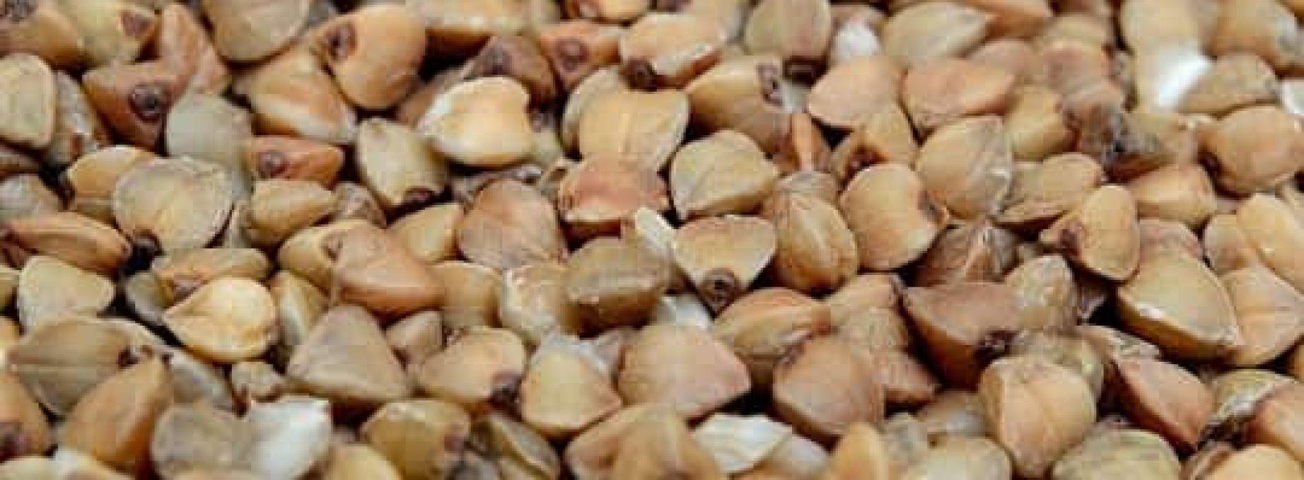 Bokhvete – Hvorfor spise og hvordan anvende?