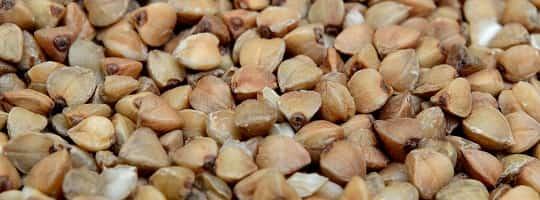 Bokhvete - Hvorfor spise og hvordan anvende?